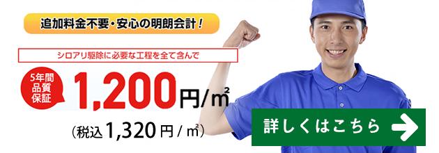 1,200円/1㎡から可能なシロアリ駆除